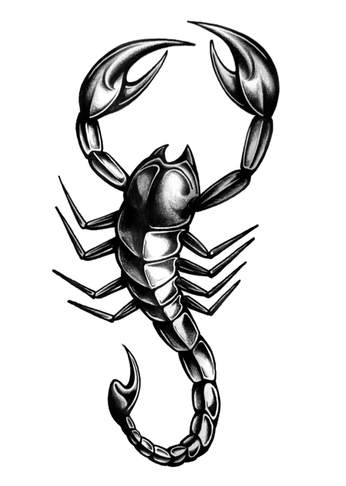 500x702 Scorpio Tattoo Design Stencil