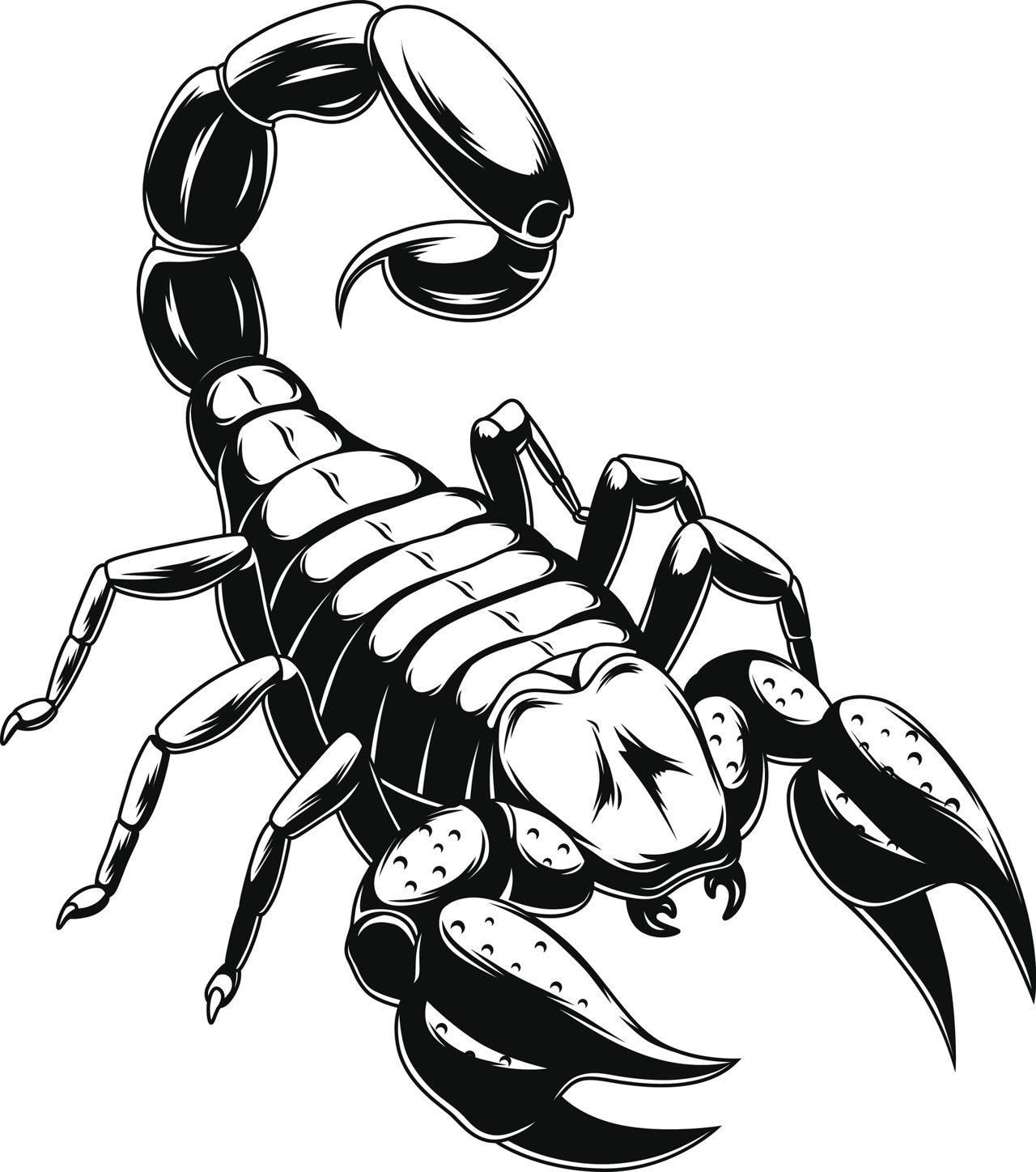 The best free Scorpio drawing images  Download from 155 free