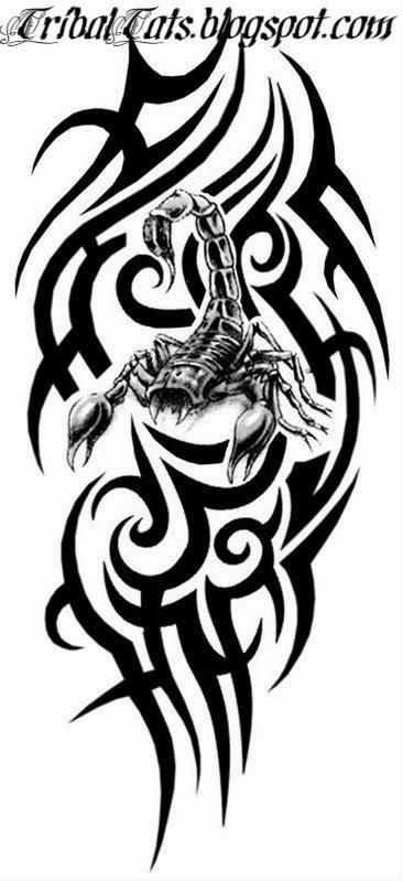 366x799 Tribal Scorpion Tattoo Emperor Scorpions Tattoo