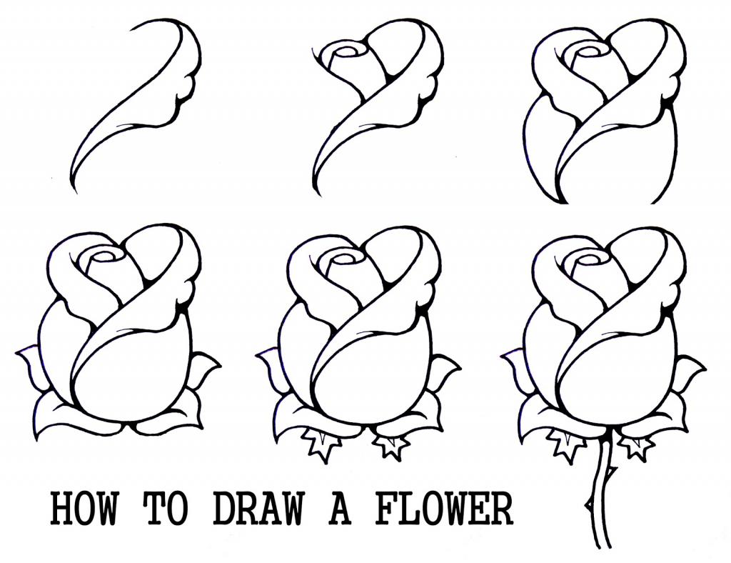 Scorpion Pencil Drawing