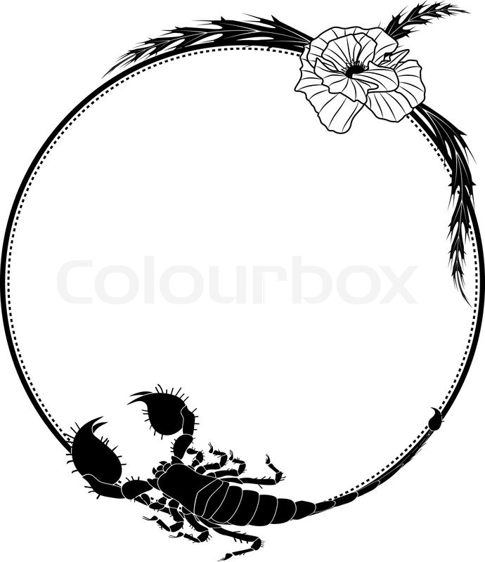 690x800 Vector Frame With Flowers Of Poppy And Scorpion Stock Vector