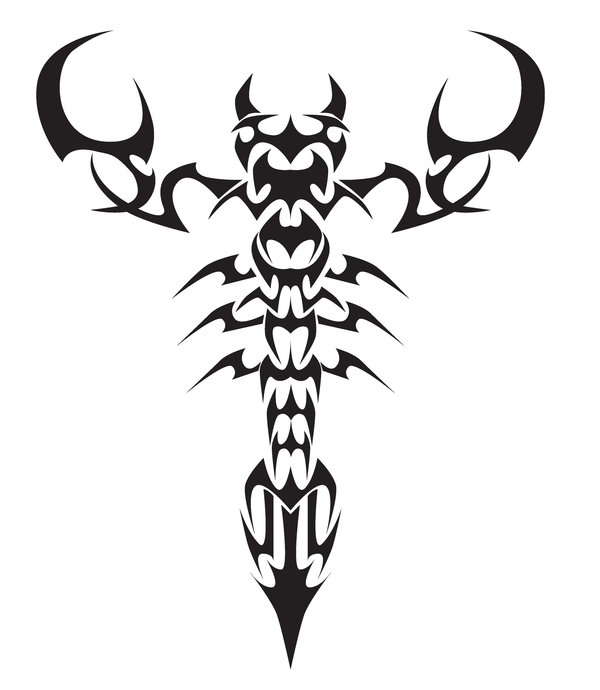 Scorpion Tattoo Drawing At Getdrawings Free For Personal Use