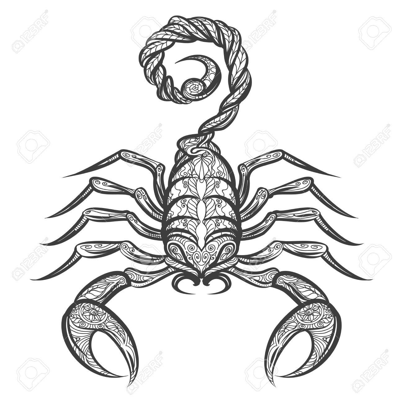1299x1300 Drawn Scorpion