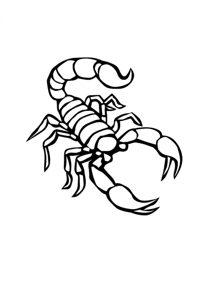 722x1024 Scorpion Coloring Pages Desert Scorpion And Free