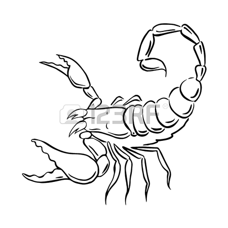 450x450 Scorpion Logo Stock Photos. Royalty Free Business Images