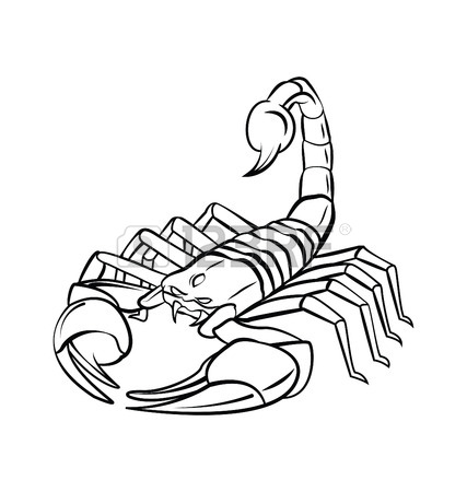 427x450 Scorpion Stock Photos. Royalty Free Business Images