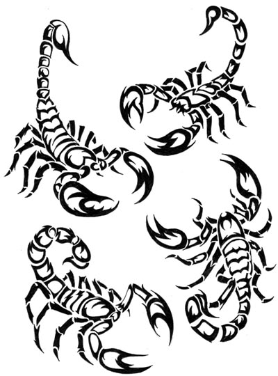400x540 Scorpion Colouring Pages