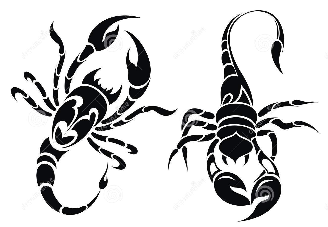 1300x902 Collection Of Hhand Drawn Scorpion Tattoos Set