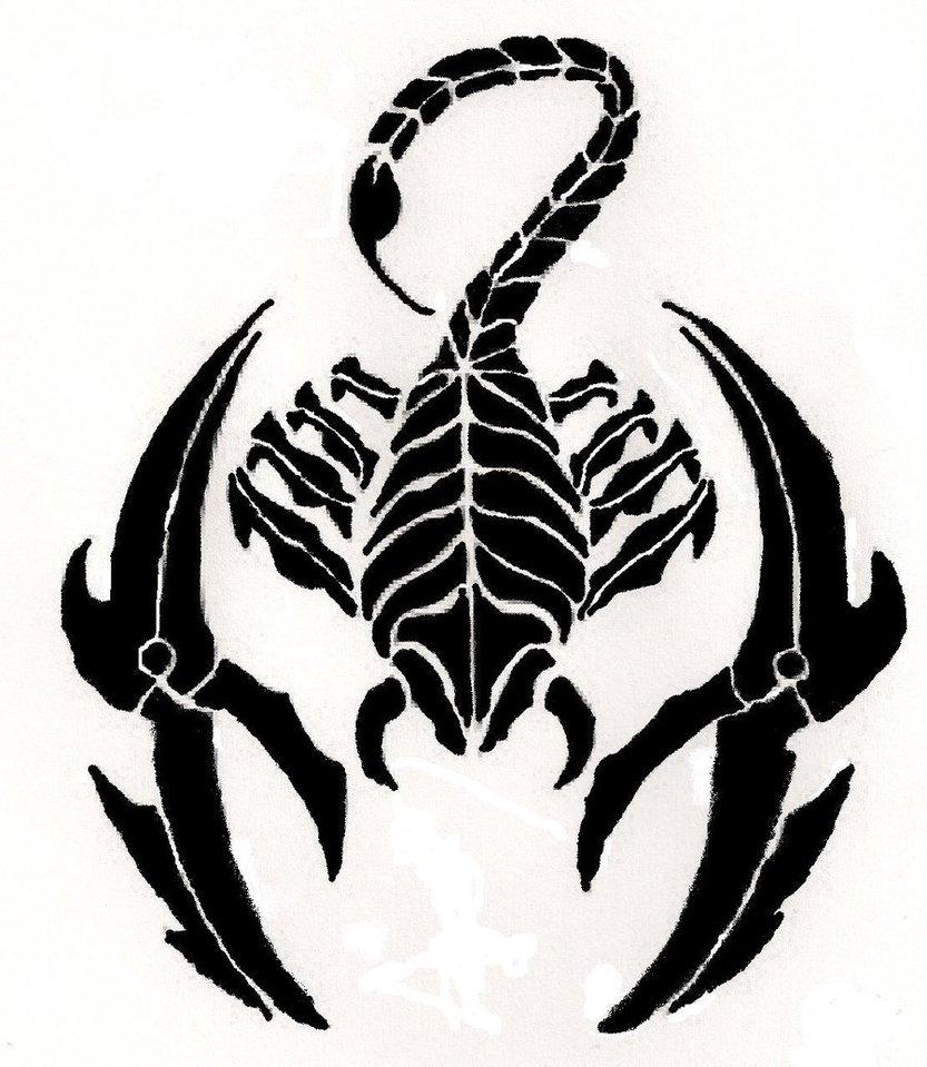 833x959 Drawings Of Scorpions