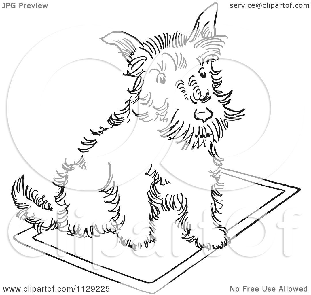 1080x1024 Cartoon Clipart Of An Outlined Scottie Dog On A Rug