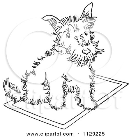 450x470 Clipart Of A Cartoon Scottie Dog In A Star Trek Shirt