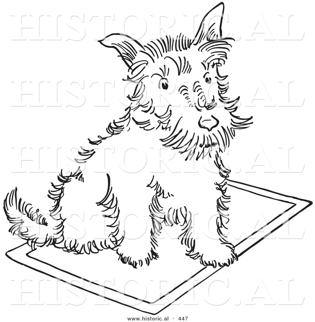 1024x1044 Historical Vector Illustration Of A Scottie Dog Sitting On A Rug