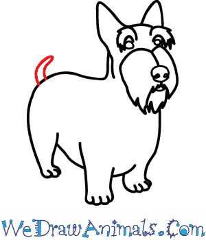 300x350 How To Draw A Scottie Dog