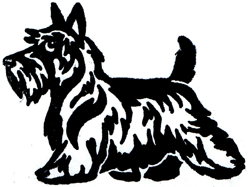 977x737 Scottish Terrier Cartoon Clipart Scottie Scottish