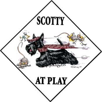 350x350 Scottish Terrier