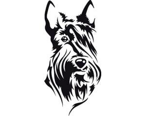300x240 Scottish Terrier Dog Head Sticker