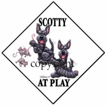 350x350 Scottish Terrier