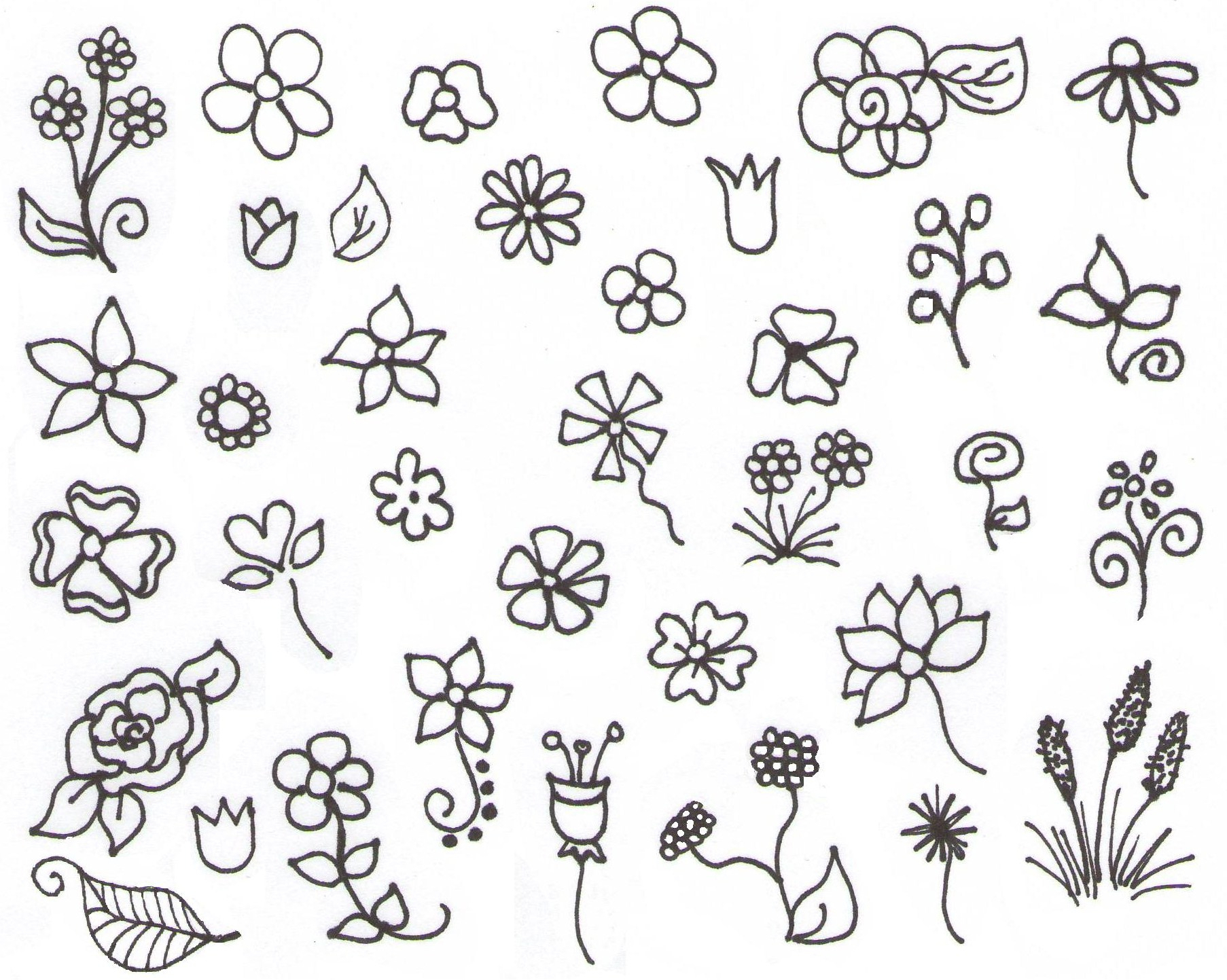 1806x1443 Drawing Simple Flower Image Scrapbooking Flower Templates Variety