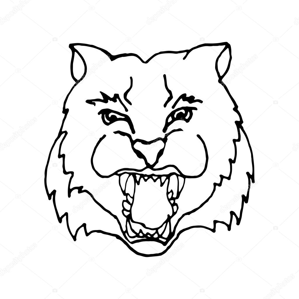 1024x1024 Hand Draw Head Screaming Tiger With Big Teeth In Black And White