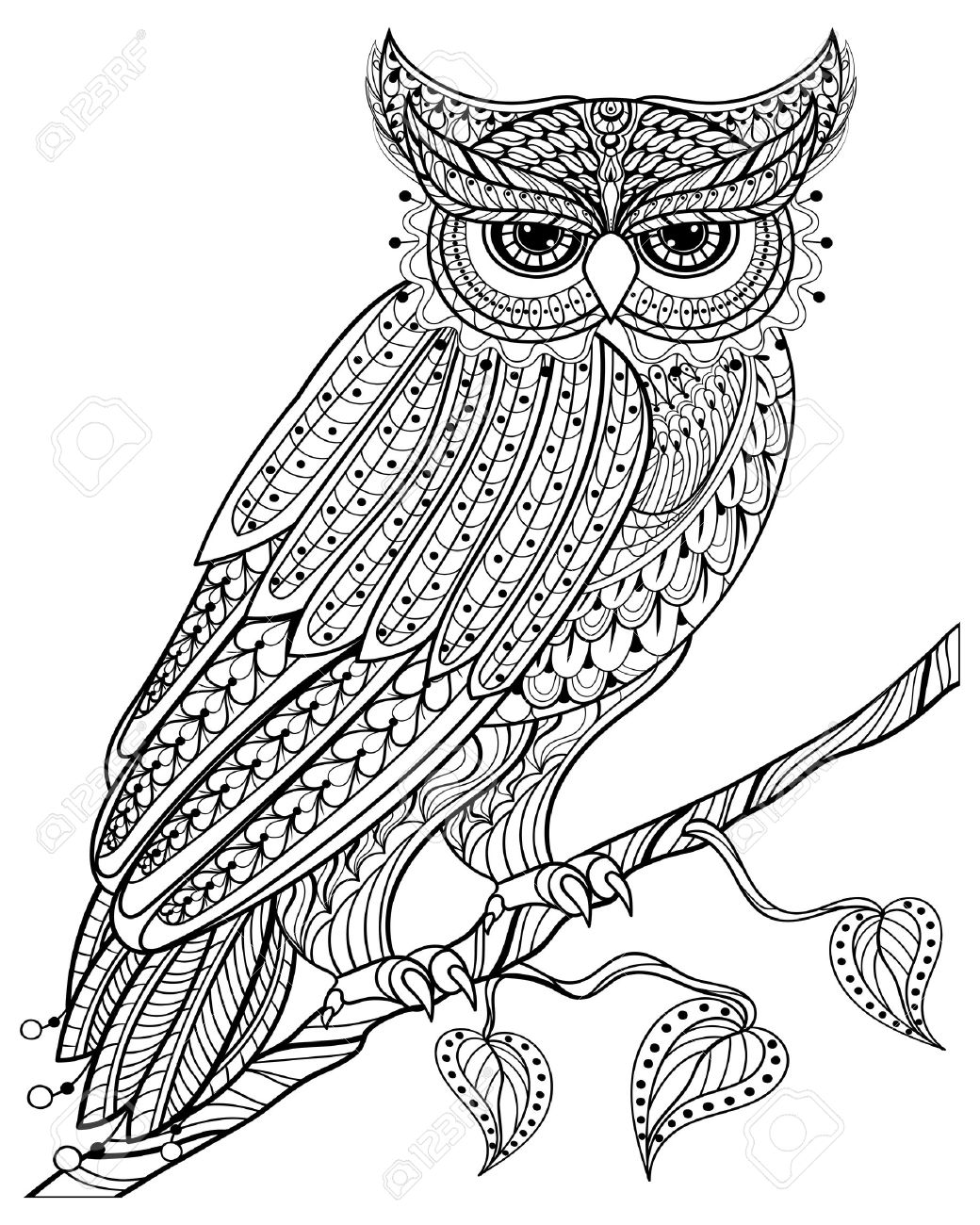 1040x1300 Hand Drawn Magic Owl Sitting On Branch For Adult Anti Stress