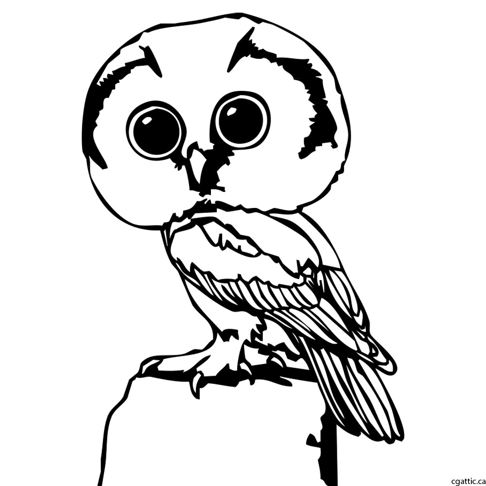 1000x1000 Owl Cartoon Drawing In 4 Steps With Photoshop