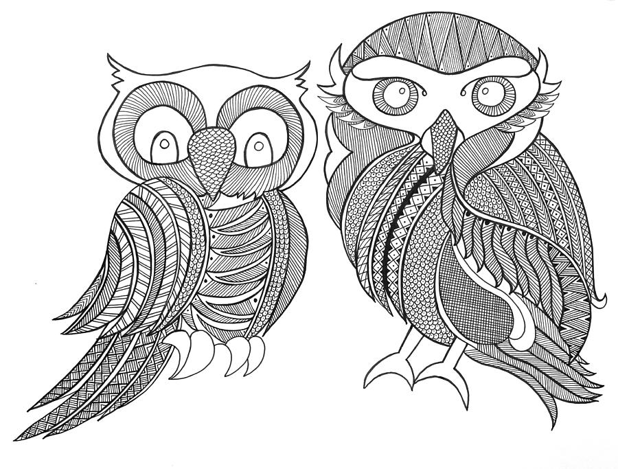900x683 Bird Owls Drawing By Neeti Goswami