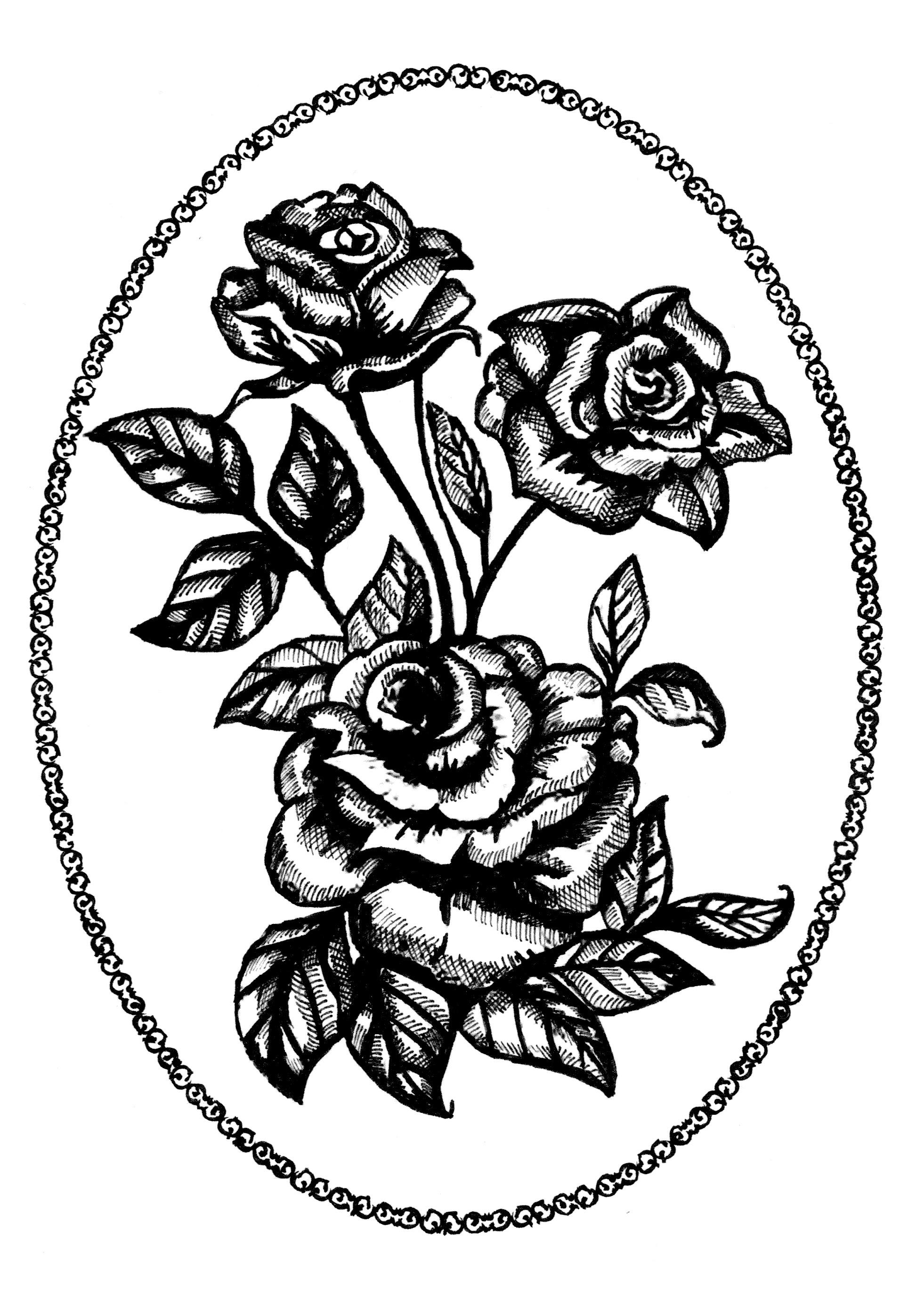 1962x2771 Screen Printingpaper Cut Ideas Kerry Hoult Graphic Design