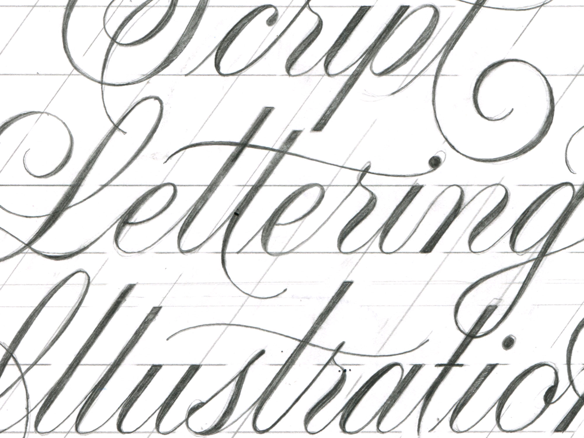 2000x1500 Script Lettering Illustration Process Pies Brand
