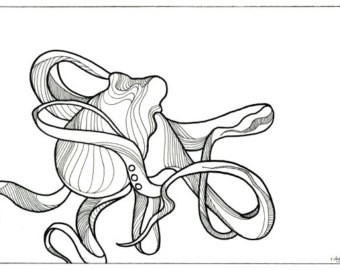 340x270 Octopus Drawing Cephalopods And Script Fine Art Giclee