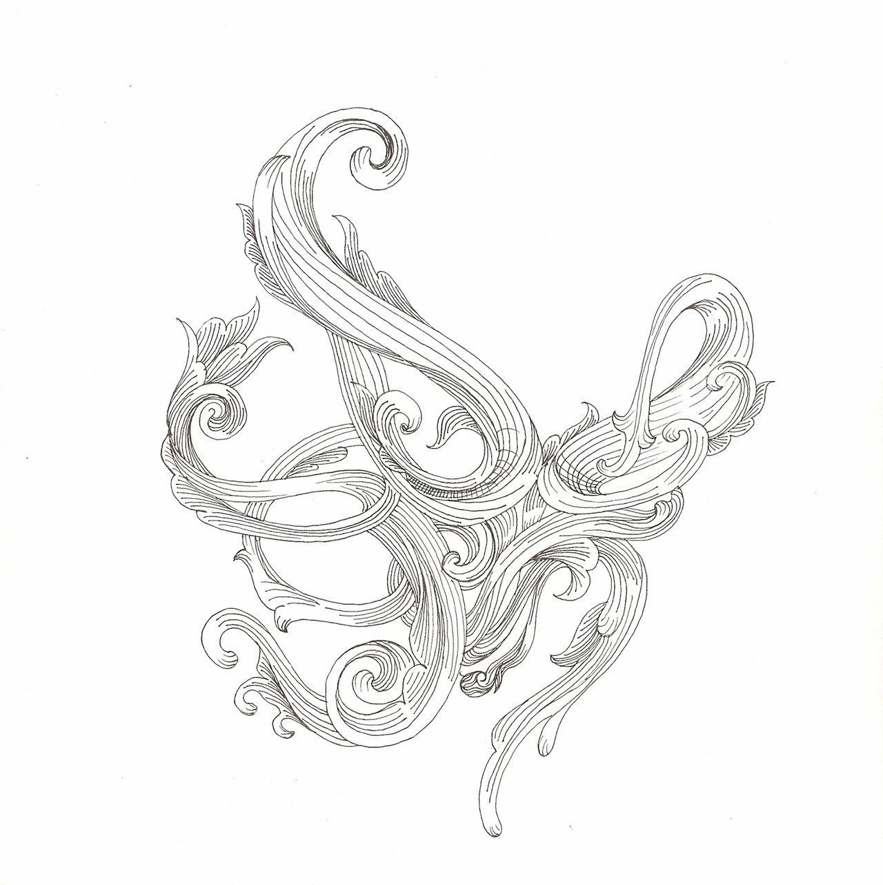 1280x1282 Octopus Drawing Scrollwork Cephalopod 2 Original
