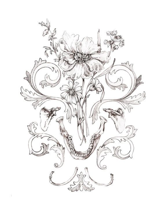 570x738 8x10 Print Of Original Drawing Mandible Bouquet By Momerathgarden