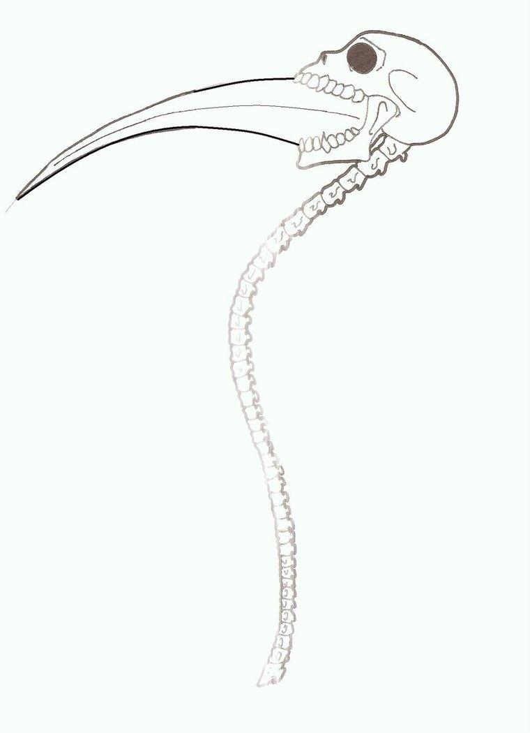 760x1050 Death Weapon Death Scythe By Akumakurohasu