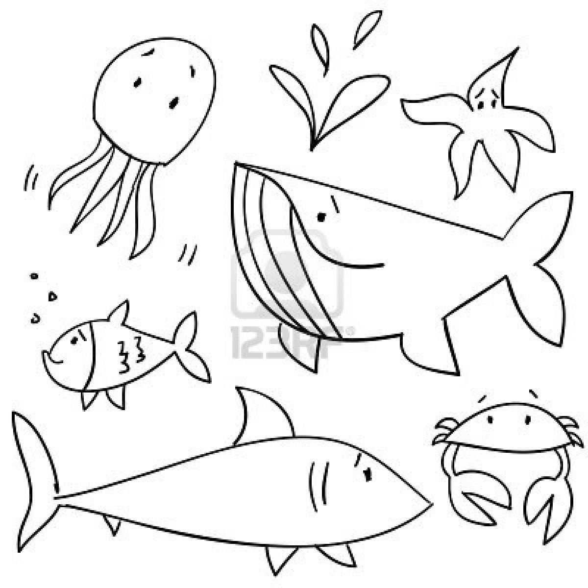 1200x1200 Easy Sea Animals To Draw Drawn Animal Sea Creature