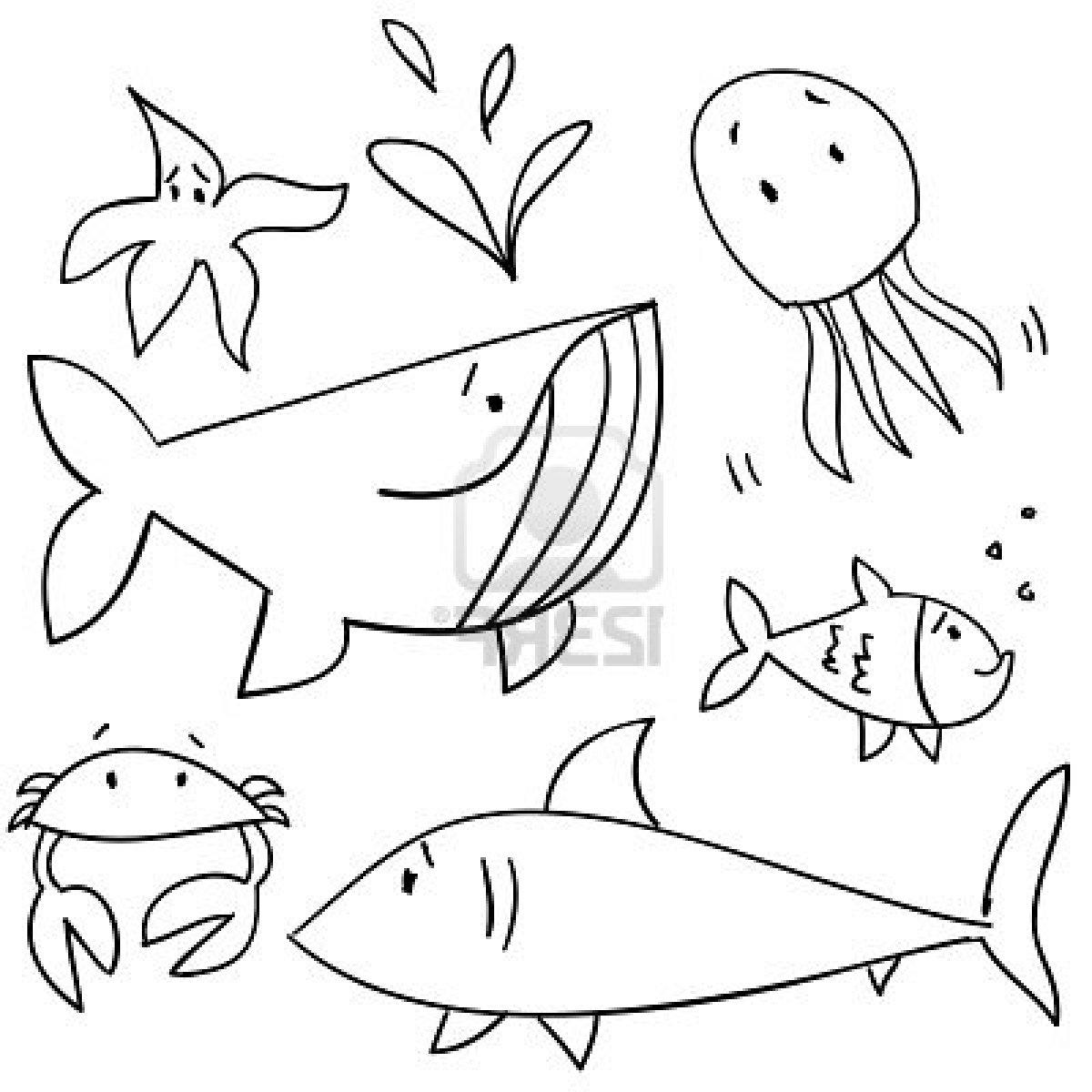 1200x1200 Sea Animals Drawing Drawn Animal Sea Creature