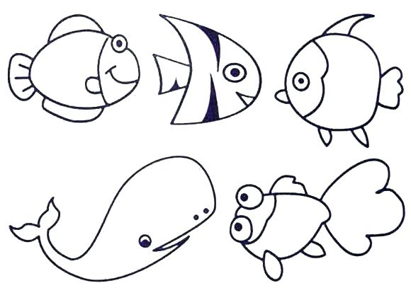 580x424 Ocean Creatures Coloring Pages For Ocean Creatures Coloring Pages