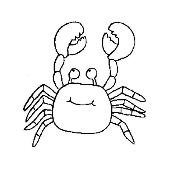 612x652 Cute Sea Animals Coloring Pages