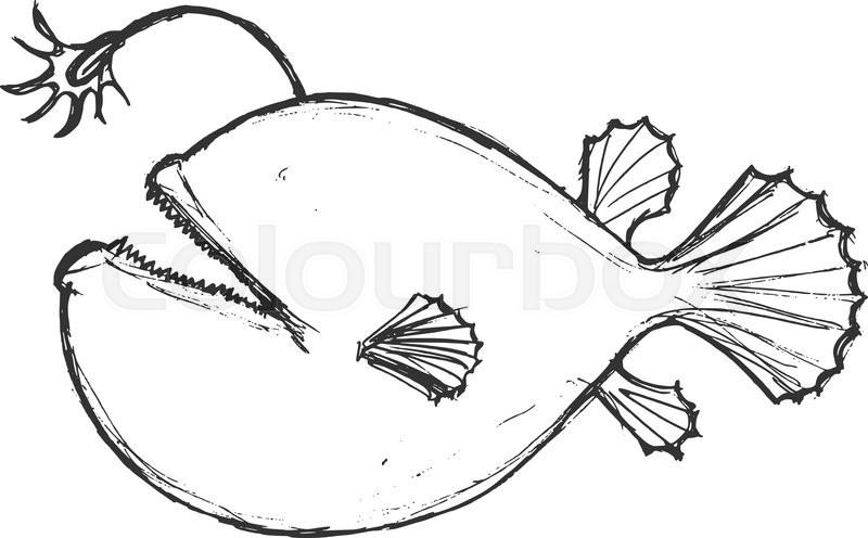 800x496 Deep Sea Fish, Illustration Wildlife, Zoo, Wildlife, Animal
