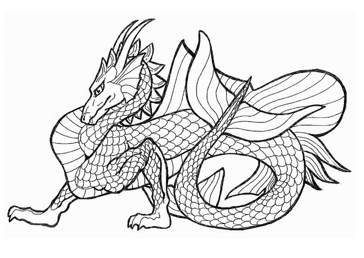 Sea Dragon Drawing