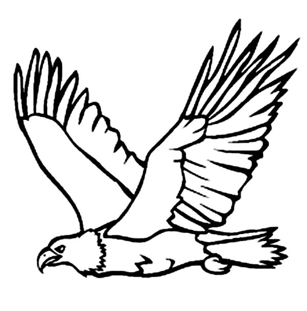 600x608 Eagle Carrying Fish From Sea Coloring Page Coloring Sun