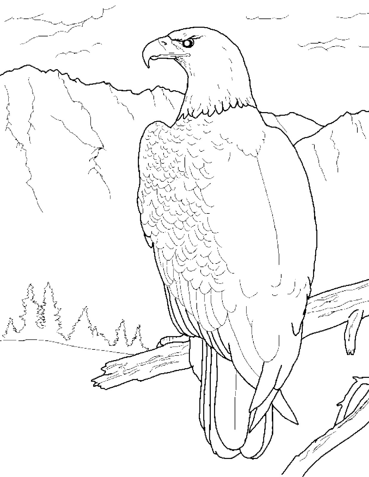 1236x1600 Eagle Coloring Pages