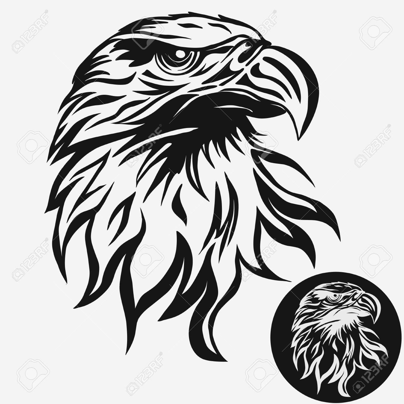 1300x1300 Eagle Eye Stock Photos. Royalty Free Business Images