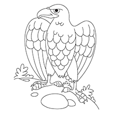 230x230 20 Cute Eagle Coloring Pages For Your Little Ones