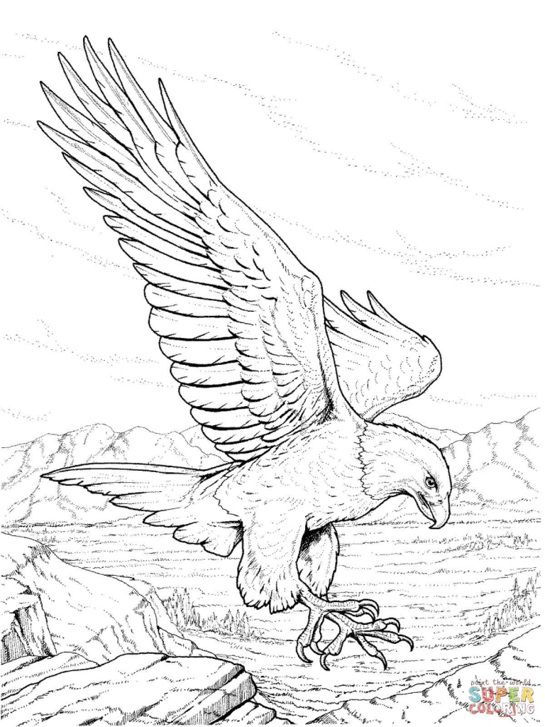 768x1024 Realistic Eagle Drawing Bald Eagle Coloring Pages Free Coloring