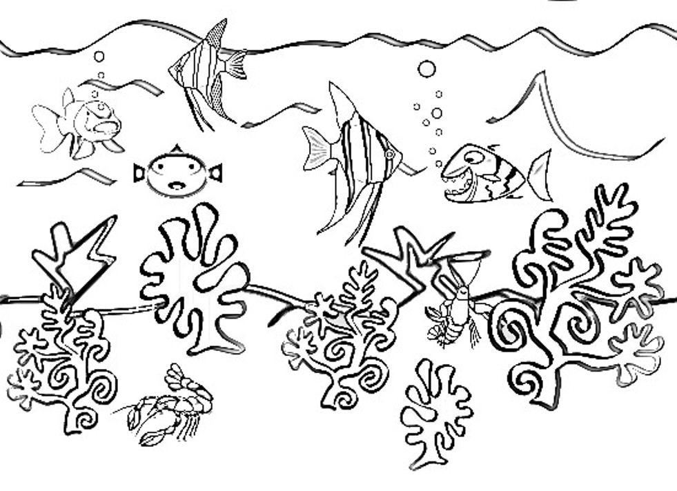 981x712 Underwater Sea Life Coloring Book Plant Water Pages