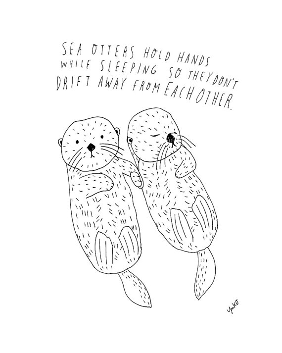 Sea Otter Drawing At Getdrawings Com Free For Personal