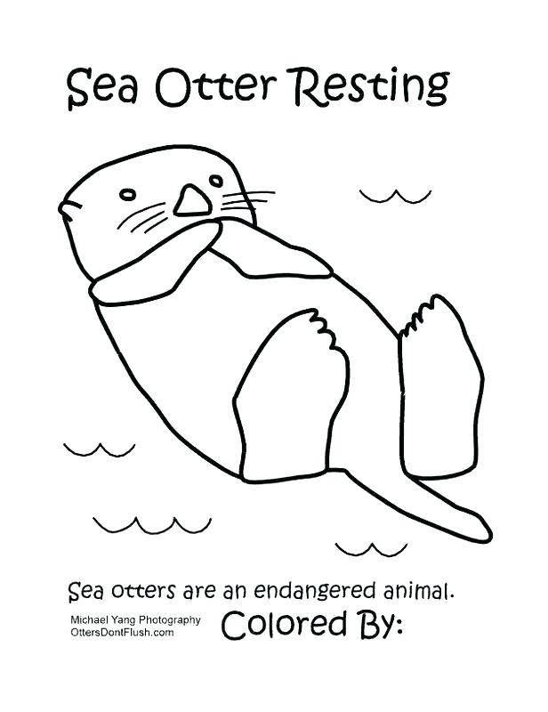 Sea Otters Drawing at GetDrawings.com | Free for personal use Sea ...