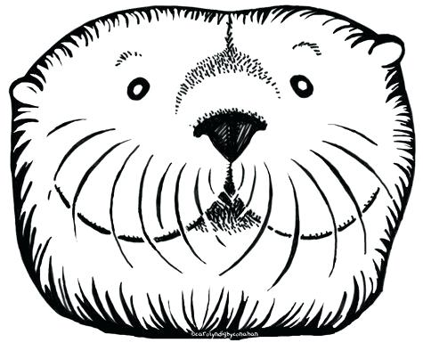 475x385 Sea Otter Coloring Pages Sea Otter Drawn 7 Baby Sea Otter Coloring