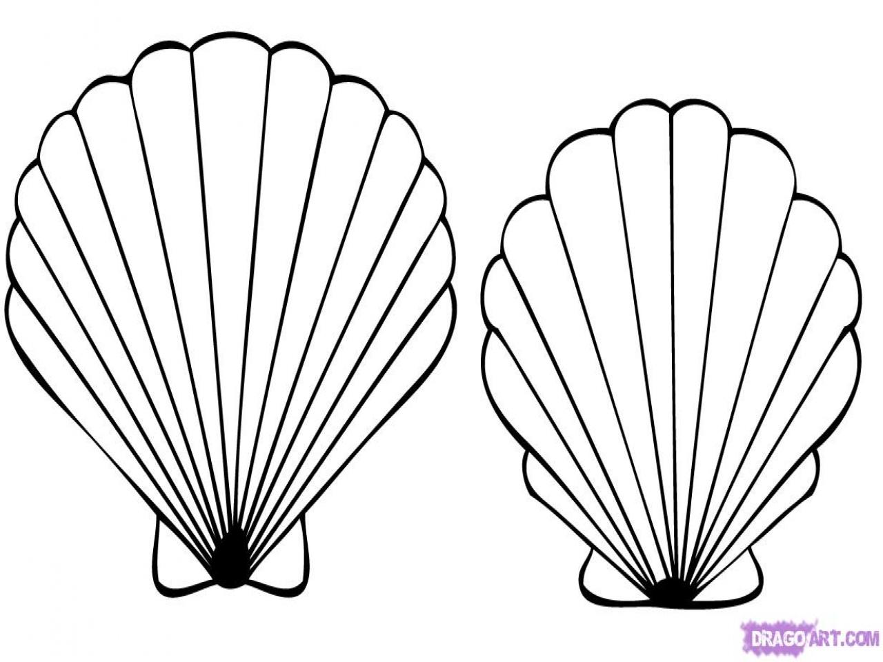 1280x960 Sea Shells Coloring Pages Cartoon Shell Drawings