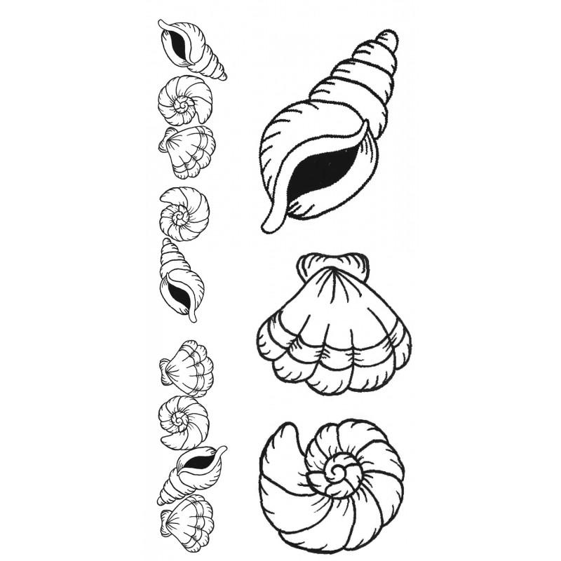800x800 Seashells Rubber Stamp Set