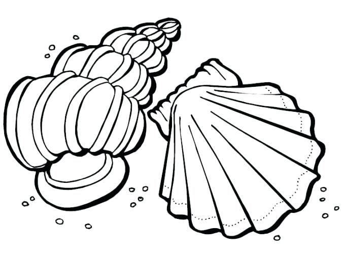 678x500 Brilliant Glamorous Sea Shell Coloring Pages Print Printable